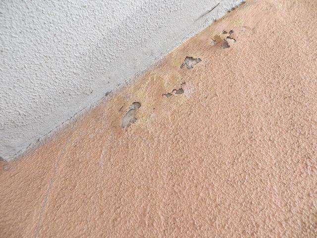 屋外階段裏外壁際